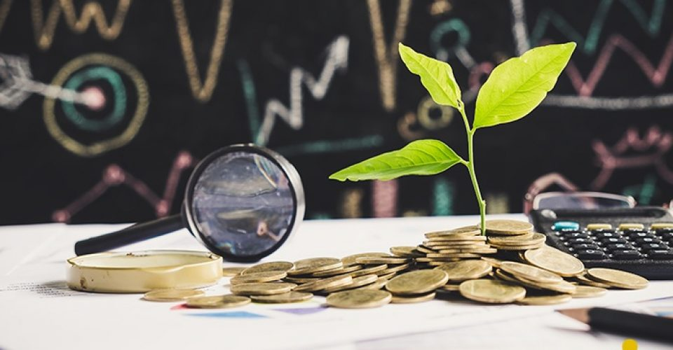 tree growing on stack of coins on financial chart report with ma